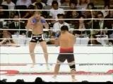 Вандерлей Сильва vs Татсуя Ивасаки